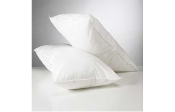2 Pack Polyester Pillows and Pillow Protectors